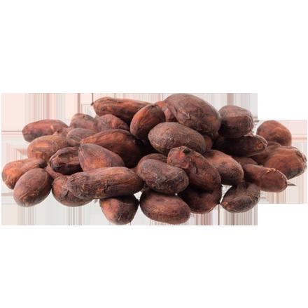 Kakao ist Rohstoff und natürlicher Inhaltsstoff von i+m Naturkosmetik - fair bio vegan.