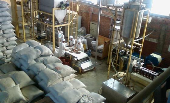 im-naturkosmetik-fairtrade-produzent-sacha-inchi-peru-produktion